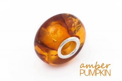 Honey Amber Charm Bead